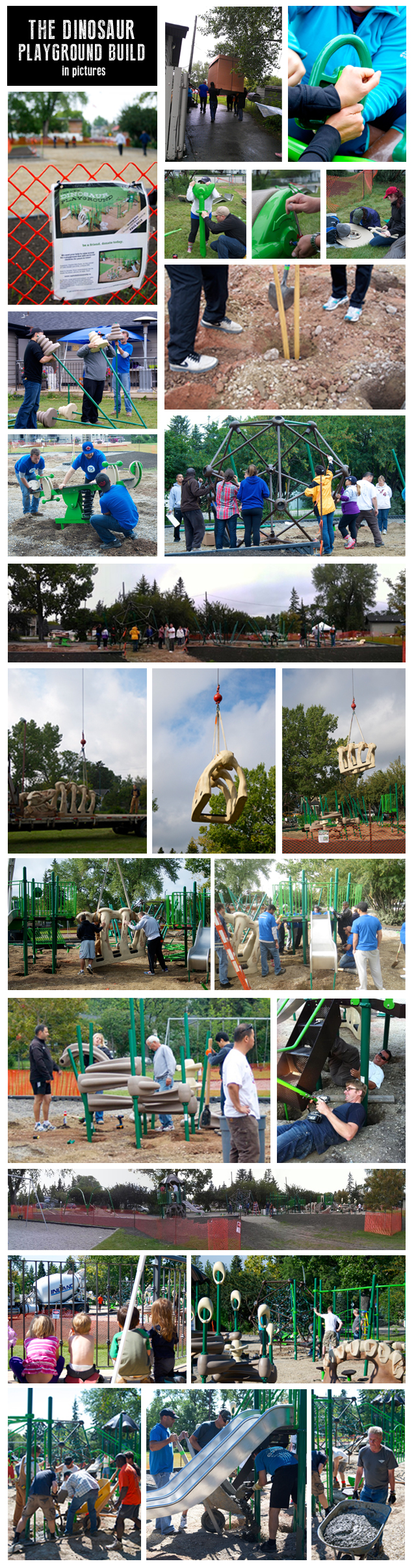 Dinosaur Playground Build in Pictures